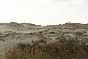 Mountainbiken | Puur* Beachevents.nl